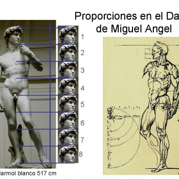 Proporciones figura humana.