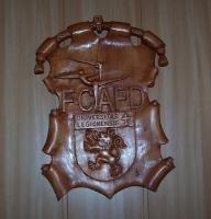 Escudo INEF