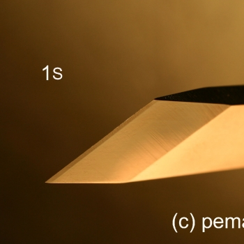 El perfil de la gubia 1S