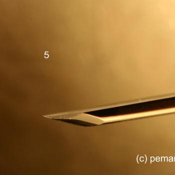 El perfil de la gubia 5