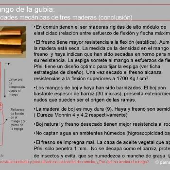 Conclusiones del estudio del mango