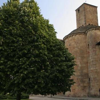 Tilo favorito (Monasterio románico de Leyre)